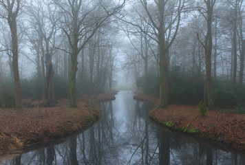 Pond in a landscape park on a foggy, autumn day.