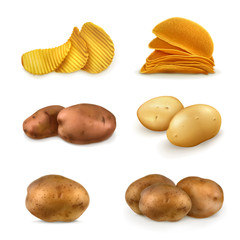 Potatoes vector set