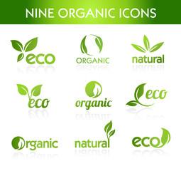 Green Organic Icons