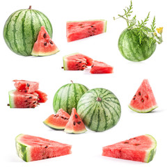 Collection of fresh juicy watermelon, isolated on white