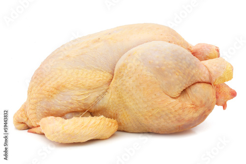 Fresh chicken - fresh hen