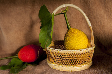 still life with Gac fruit, Baby Jackfruit, Spiny Bitter Gourd, S