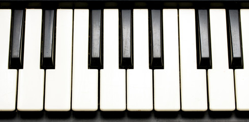 Piano keyboard. Learning piano concept