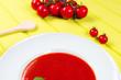 leckere tomatensuppe angerichtet