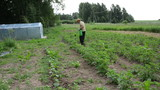 Farmer man manual spray pesticides on plants. Weed vermin kill poster