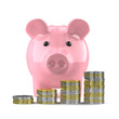 Cute piggy bank has stacks of gold and silver coins