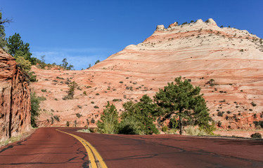 Red road through Zion National Park