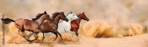 Poster Zandwoestijn Herd gallops in the sand storm