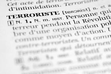 Terrorist - Terroriste