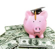 piggy bank with graduation cap