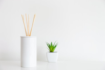House diffuser and green plant