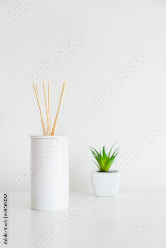 House perfume scent diffuser and green plant