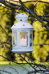 White iron lantern hanging on hawthorn branch. Garden party deco