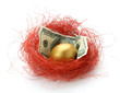 A golden egg with money in the nest