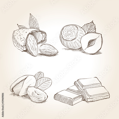 Nuts and Chocolate Illustration