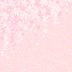 枝垂れ桜濃淡重ね和紙
