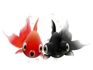 金魚のカップル