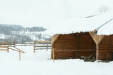 Stable for horses in winter