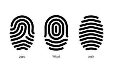 Fingerprint id types on white background.
