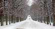 Vienna - alley from gardens of Schonbrun palace in winter