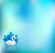 Beautiful swan and flower, light blue background.