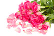 tender pink  roses bouquet with petals