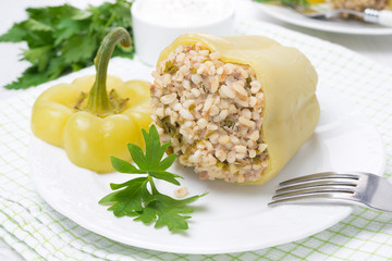 peppers stuffed with minced meat and bulgur
