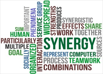 SYNERGY - word cloud