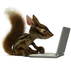 Squirrel using a laptop