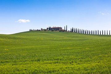 Tuscan farmhouse and cypress trees