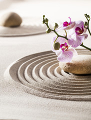 inner beauty with zen flowers