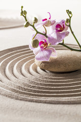 zen aesthetics with sand and flower