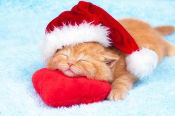 Litlte kitten wearing Santa's hat slipping on the pillow