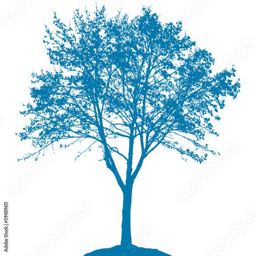 Baum mit Ästen - 59489611