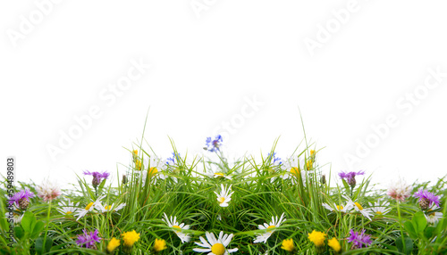 canvas print picture blumenwiese freisteller