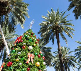 christmas tree in Miami