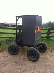 Oddest little horse buggy