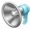 Megaphone or bullhorn