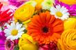 Leinwandbild Motiv Blumen als Hintergrund