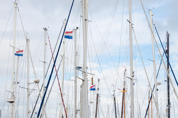 masts of sailboats