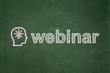 Education concept: Head With Lightbulb and Webinar on chalkboard
