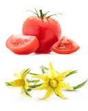 Tomato and flowers isolated on white background