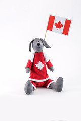 toy dog with the flag of Canada