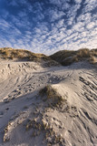 Dunes at the Danish North Sea coast