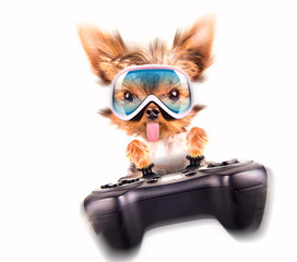 charming Puppy play on game pad