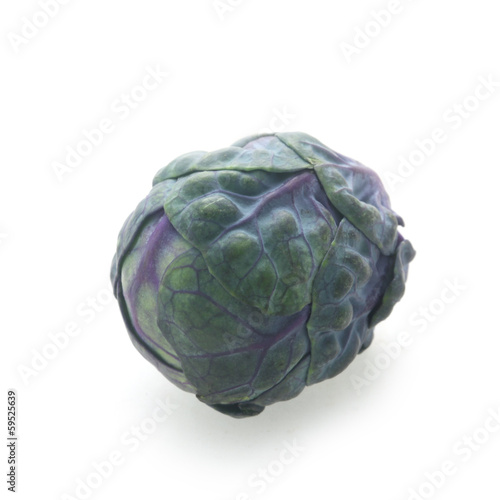 Purple Brussel Sprout