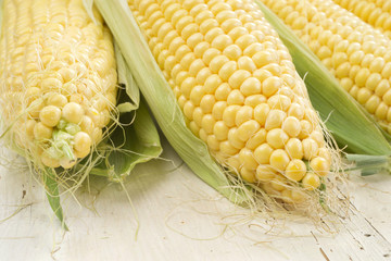 Corn cobs whit green leaves