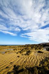 footstep cloud beach   coastline water  musk pond  and summer