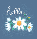 Hello daisies card illustration