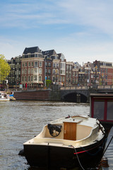 Amstel riverbank,  Amsterdam, Netherlands